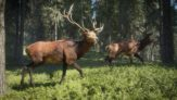theHunter Call of the Wild PC